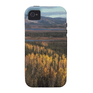 AERIAL VIEW OF AUTUMN LANDSCAPE VIBE iPhone 4 COVER