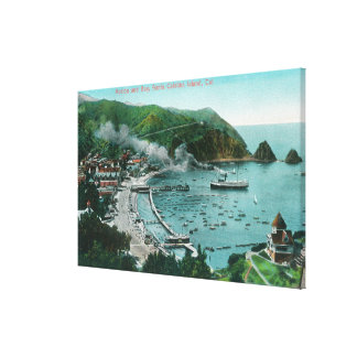 Aerial View of Avalon and Bay Canvas Print