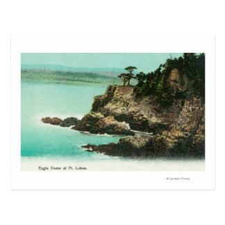Aerial View of Eagle Dome at Point Lobos Postcard