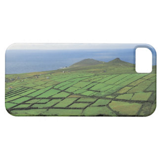 aerial view of farmland by the sea barely there iPhone 5 case