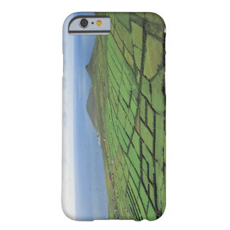 aerial view of farmland by the sea barely there iPhone 6 case