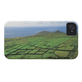 aerial view of farmland by the sea iPhone 4 case