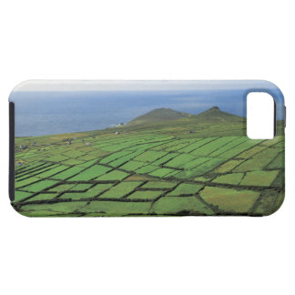 aerial view of farmland by the sea iPhone 5 case