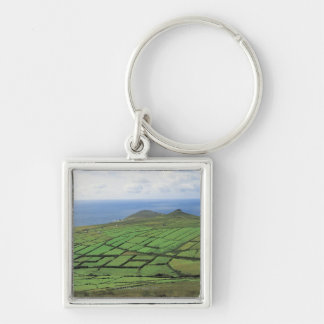 aerial view of farmland by the sea key ring
