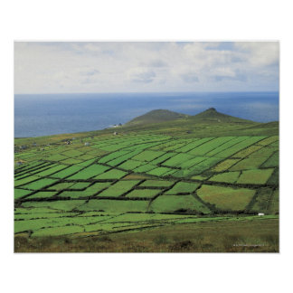 aerial view of farmland by the sea poster