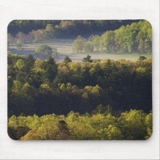 Aerial view of forest in Cades Cove, Great Smoky Mouse Mat