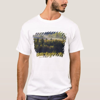 Aerial view of forest in Cades Cove, Great Smoky T-Shirt