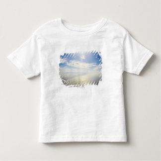 Aerial view of Long Beach, California Toddler T-Shirt