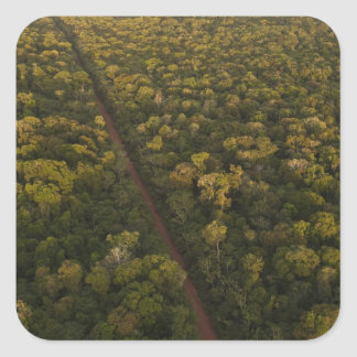 Aerial View of rainforest. Iwokrama Reserve, 2 Square Sticker