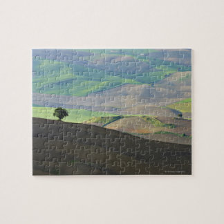 Aerial View of Rural Landscape near Ronda, Jigsaw Puzzle