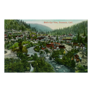 Aerial View of the CityDunsmuir, CA Poster
