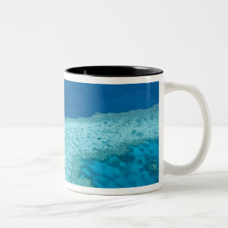 Aerial view of The Great Barrier Reef by the Two-Tone Coffee Mug