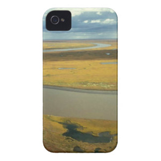 AERIAL VIEW OF TUNDRA TURNING GOLDEN IN THE FALL iPhone 4 Case-Mate CASES