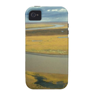 AERIAL VIEW OF TUNDRA TURNING GOLDEN IN THE FALL VIBE iPhone 4 CASES