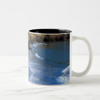 aerial view of waves washing up against a mugs