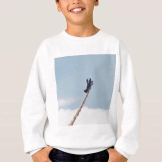 Aerobatic Biplane Sweatshirt