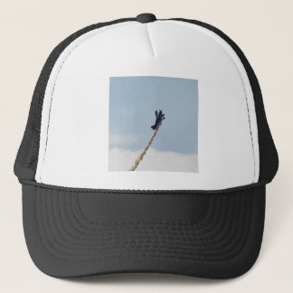 Aerobatic Biplane Trucker Hat