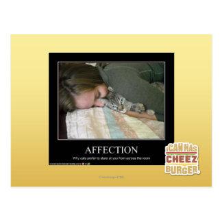 Affection Postcard