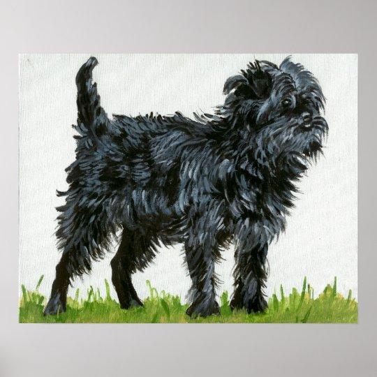 Affenpinscher Dog Portrait Poster