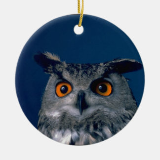 Affordable Owl Holiday Gift Christmas Ornament