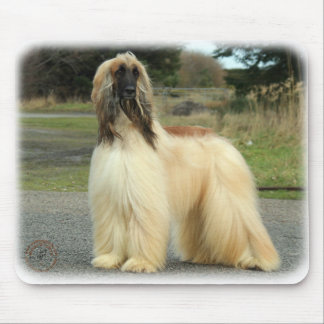 Afghan Hound 9Y119D-037 Mouse Mat