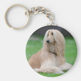 Afghan Hound dog beautiful photo round keychain