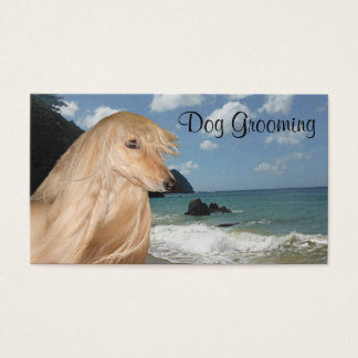 Afghan Hound dog grooming Business Card