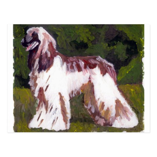 Afghan Hound Dog Postcard