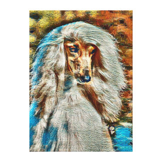 Afghan Hound Oil Portrait On Canvas