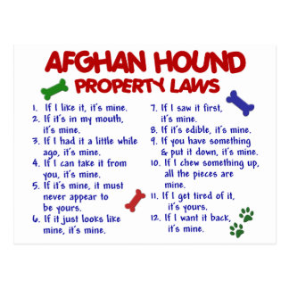 Afghan Hound Property Laws 2 Postcard