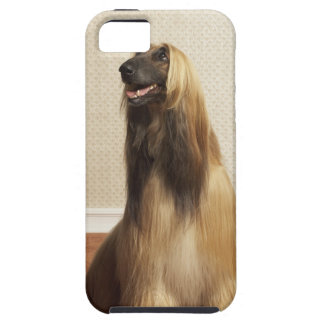 Afghan hound sitting in room 2 iPhone 5 case
