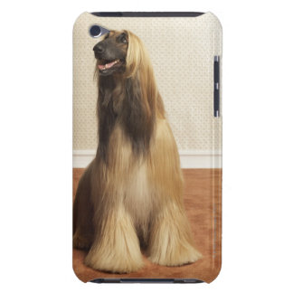 Afghan hound sitting in room 2 iPod touch case