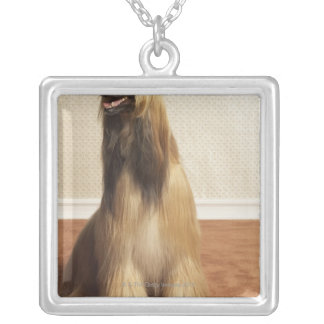 Afghan hound sitting in room 2 silver plated necklace