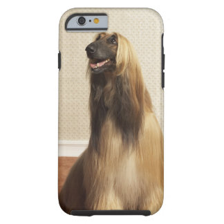 Afghan hound sitting in room 2 tough iPhone 6 case