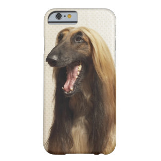 Afghan hound sitting in room barely there iPhone 6 case