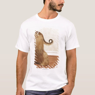 Afghan hound standing in room, end section T-Shirt