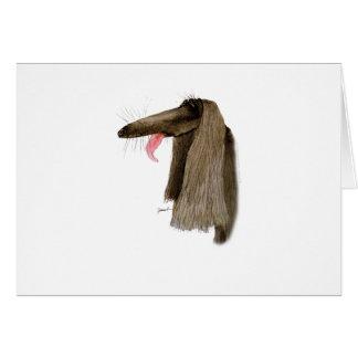 Afghan Hound, tony fernandes Card