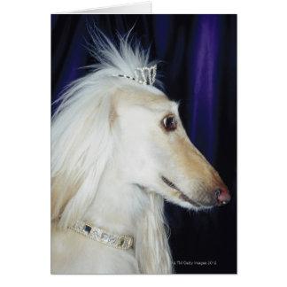 Afghan Hound wearing Tiara Card