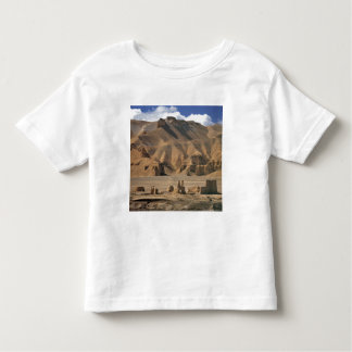 Afghanistan, Bamian Valley. Ancient earthen Toddler T-Shirt