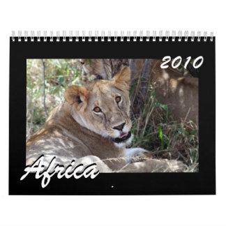 Africa 2010 15 month calendar