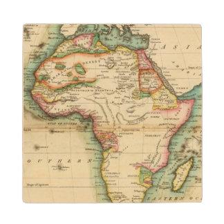 Africa 43 wood coaster