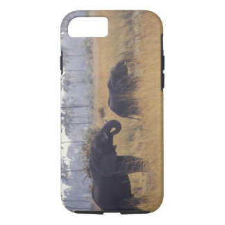 AFRICA, Botswana, African Elephant iPhone 8/7 Case