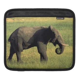 Africa, Botswana, Chobe National Park. Elephant iPad Sleeve