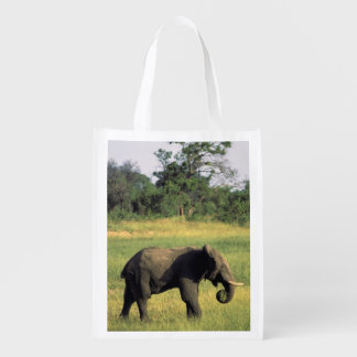 Africa, Botswana, Chobe National Park. Elephant Reusable Grocery Bag