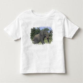 AFRICA, Botswana, Chobe National Park, Elephant Toddler T-Shirt
