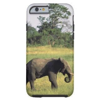 Africa, Botswana, Chobe National Park. Elephant Tough iPhone 6 Case