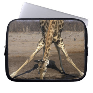 Africa, Botswana, Chobe National Park, Giraffe Laptop Sleeve
