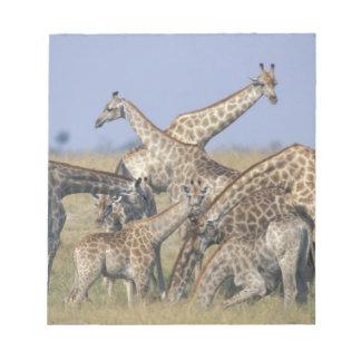 Africa, Botswana, Chobe National Park, Herd of 2 Notepad