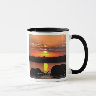 Africa, Botswana, Chobe National Park, Herd of Mug
