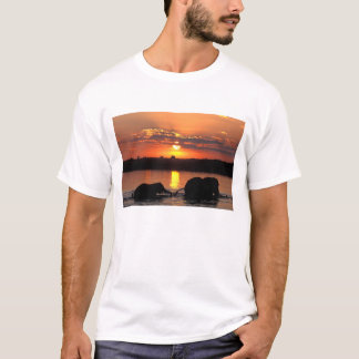 Africa, Botswana, Chobe National Park, Herd of T-Shirt